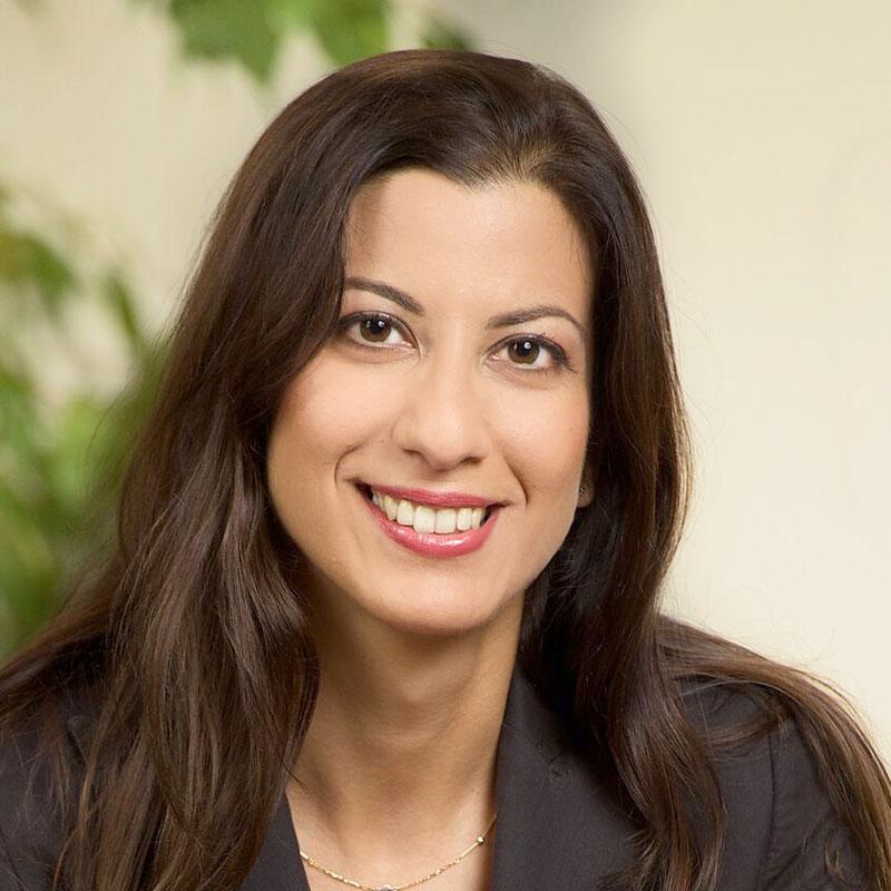 Dr. Diana Meshkat